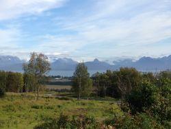 Vacant Land - Property Photo 3
